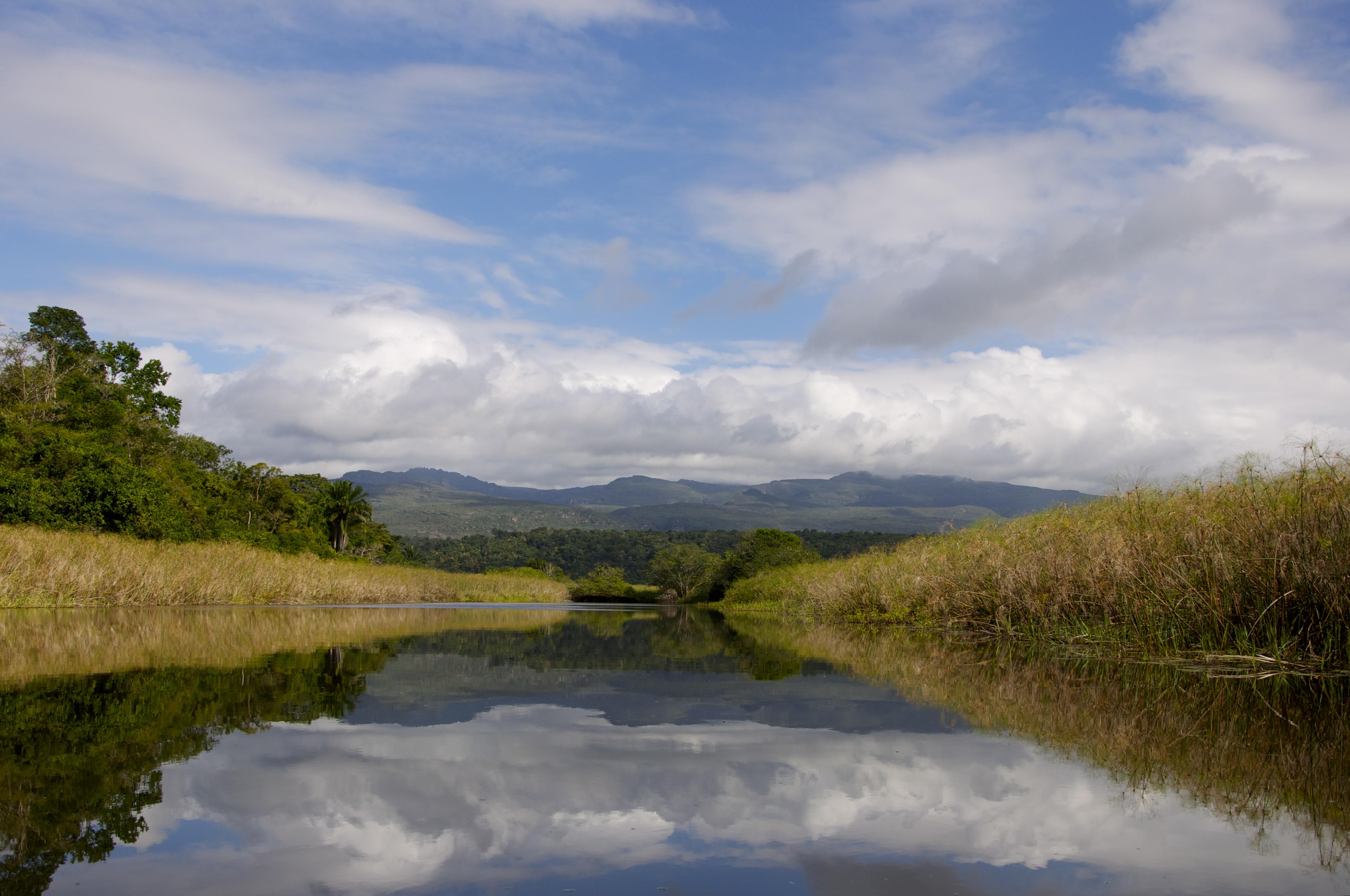 O Pantanal de Marimbus na Chapada Diamantina