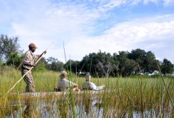 Passeio de Mokoro no Delta do Okavango