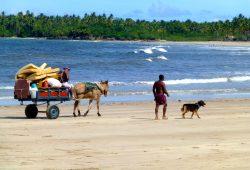 Boipeba, Moreré e Cairu, lugares encantados da Bahia