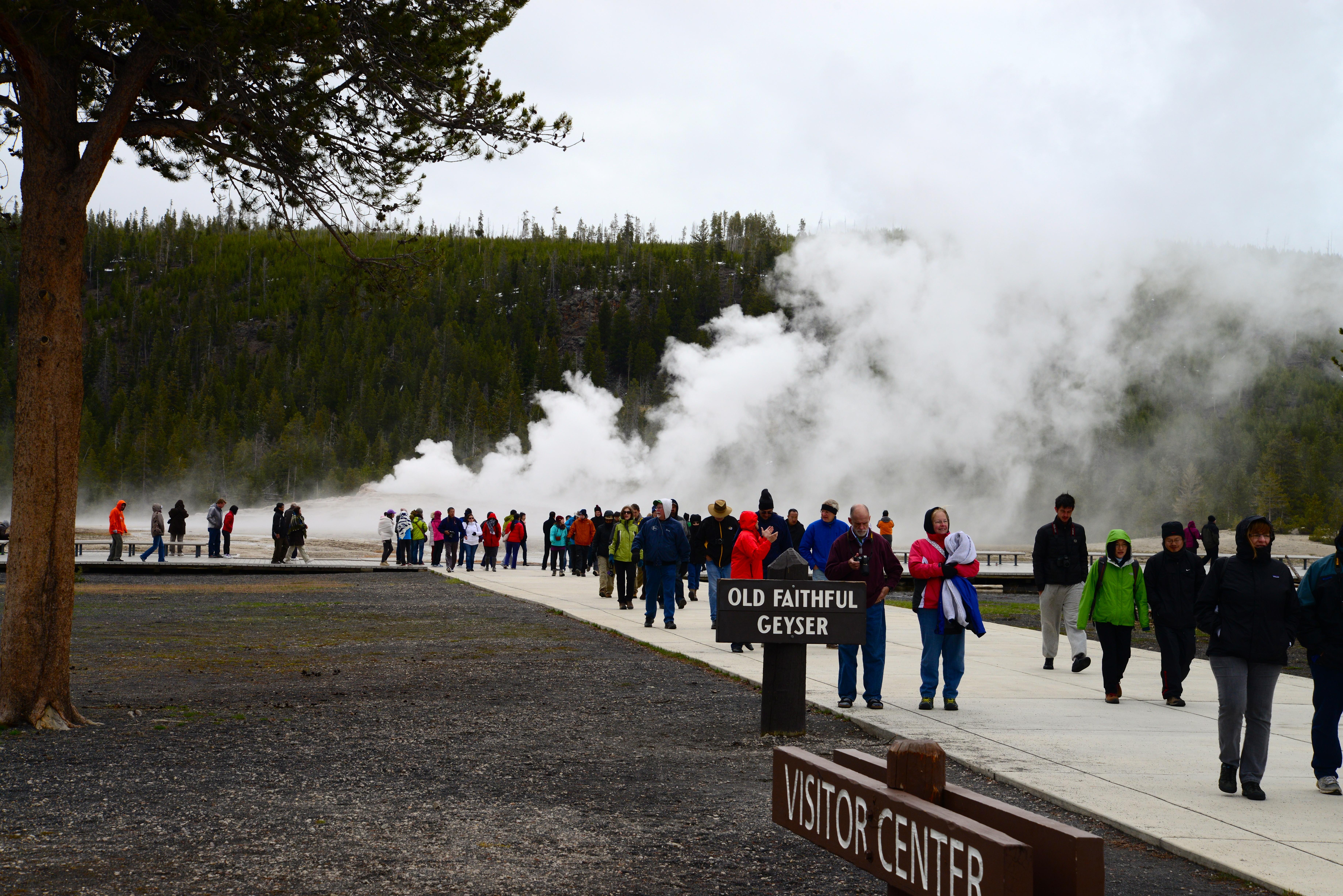 Chegando ao complexo do Old Faithful no Yellowstone