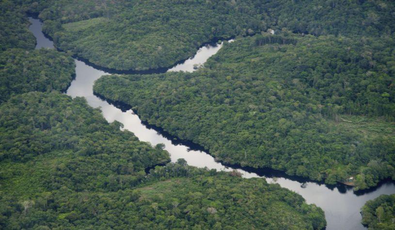 Uma trilha na Floresta Amazônica