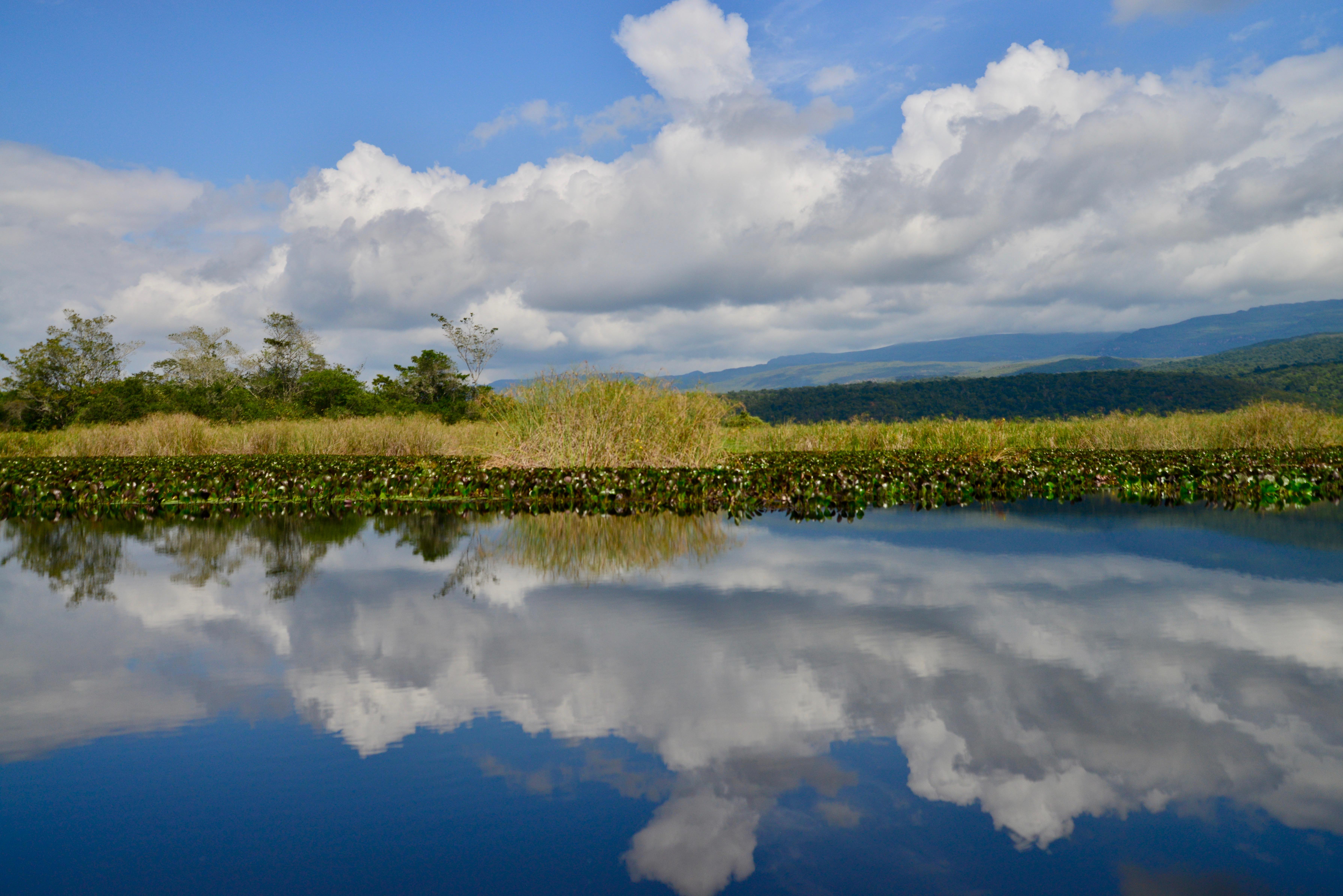 O Pantanal de Marimbus